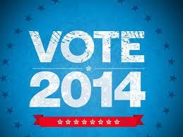 Vote 2014 image